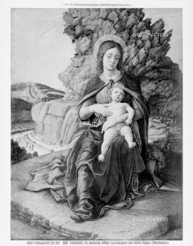 ACA-F-000816-0000 - Madonna with Child or Madonna delle Cave, tempera on wood, Andrea Mantegna (1431-1506), Uffizi Gallery, Florence - Date of photography: 1890 ca. - Alinari Archives-Alinari Archive, Florence