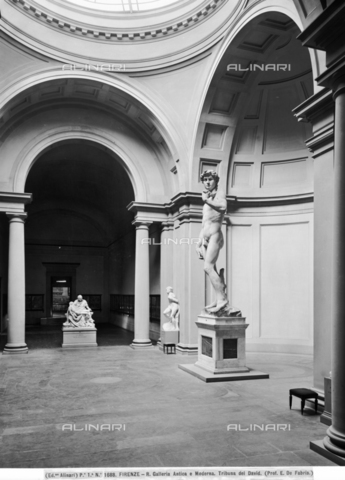 ACA-F-001688-0000 - The Gallery of David in the Academy of Florence - Data dello scatto: 1890 - Archivi Alinari, Firenze
