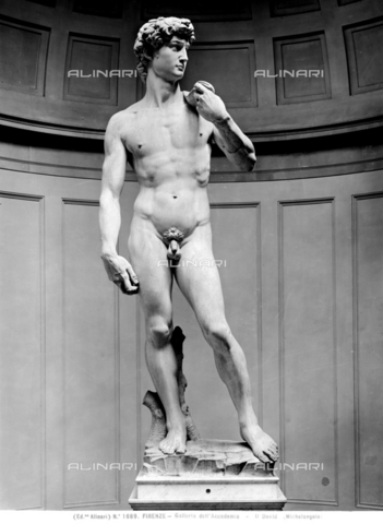 ACA-F-001689-0000 - David, marble, Michelangelo Buonarroti (1475-1564), Accademia Gallery, Florence - Date of photography: 1890 - Alinari Archives-Alinari Archive, Florence