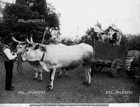 ACA-F-009630-0000 - Siena (environs). Wagon returning from the fair: Sienese costumes