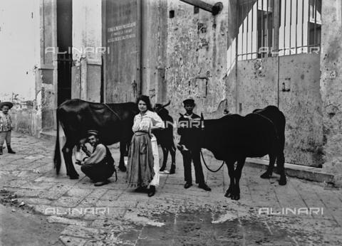 ACA-F-011660-0000 - Itinerant milkman in Naples