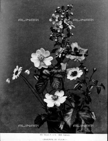 ACA-F-016121-0000 - Mazzo di fiori - Data dello scatto: 1915 - 1920 ca. - Archivi Alinari, Firenze