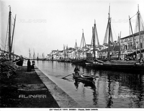 ACA-F-018549-0000 - View of the Lombardo Canal in Chioggia. Many sailboats can be seen along the canal; in the center, there is a man rowing a small rowboat
