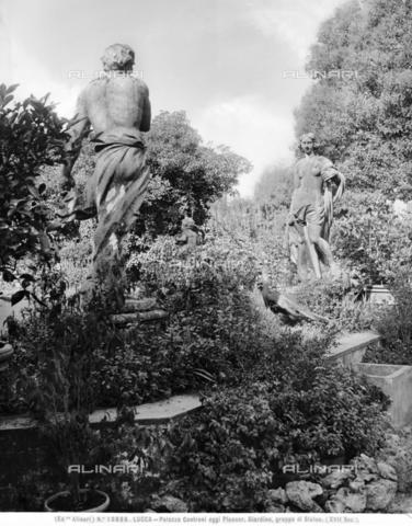 ACA-F-018886-0000 - Giardino di Palazzo Pfanner o Palazzo Controni-Pfanner, Lucca - Data dello scatto: 1915-1920 ca. - Archivi Alinari-archivio Alinari, Firenze