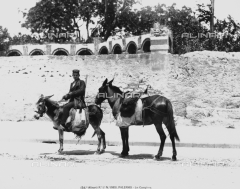 "ACA-F-019851-0000 - A ""campiere,"" or armed and mounted field guard, riding a donkey, Palermo, Sicily"
