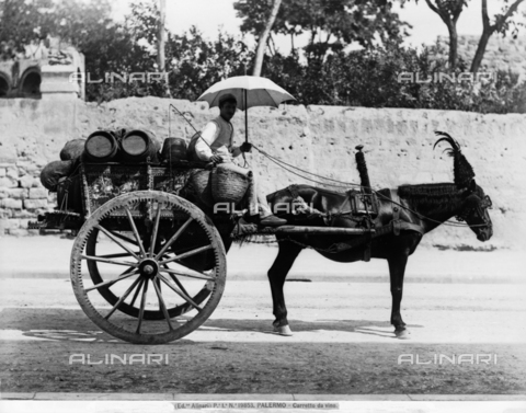 ACA-F-019853-0000 - A traditional wine cart drawn by a donkey, Palermo, Sicily