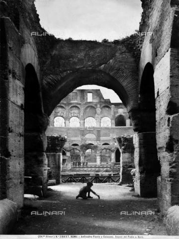 ACA-F-028837-0000 - Flavian Amphitheatre or Colosseum, Rome