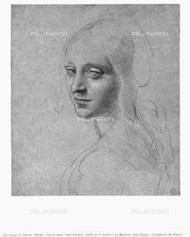 ACA-F-030443-0000 - Studio eseguito da Leonardo per il volto dell'Angelo della Vergine delle Rocce, conservato presso la Biblioteca Reale di Torino - Data dello scatto: 1890-1900 ca. - Archivi Alinari, Firenze
