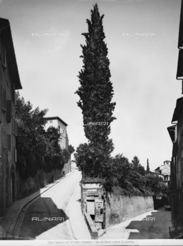 ACA-F-031169-0000 - Costa Scarpuccia and Via de' Bardi in Florence