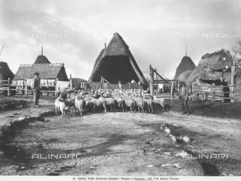 ACA-F-039349-0000 - A village with farmers and breeders in Coltano, near Pisa, with huts, barns and a flock of sheep