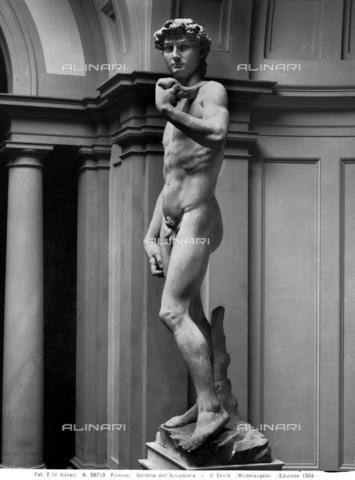 ACA-F-050713-0000 - David, marmo, Michelangelo Buonarroti (1475-1564), Galleria dell'Accademia, Firenze - Data dello scatto: 1954 - Archivi Alinari, Firenze