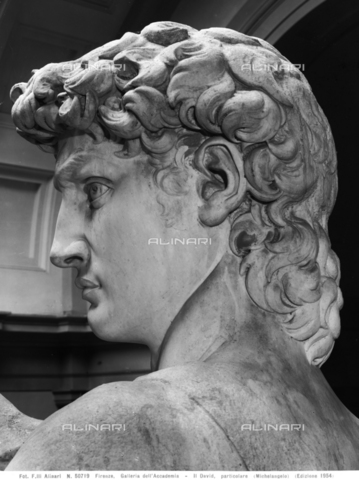 ACA-F-050719-0000 - David, head detail, marble, Michelangelo Buonarroti (1475-1564), Academy Gallery, Florence - Data dello scatto: 1954 - Archivi Alinari, Firenze