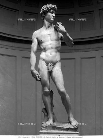ACA-F-0F1689-0000 - David, marmo, Michelangelo Buonarroti (1475-1564), Galleria dell'Accademia, Firenze - Data dello scatto: 1890 ca. - Archivi Alinari-archivio Alinari, Firenze