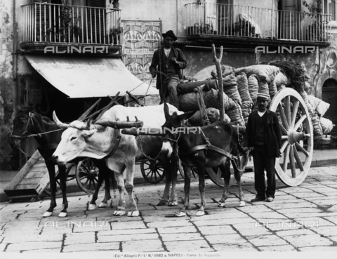 ACA-F-11662A-0000 - Two men leading a cart used for hauling material, in a street of Naples