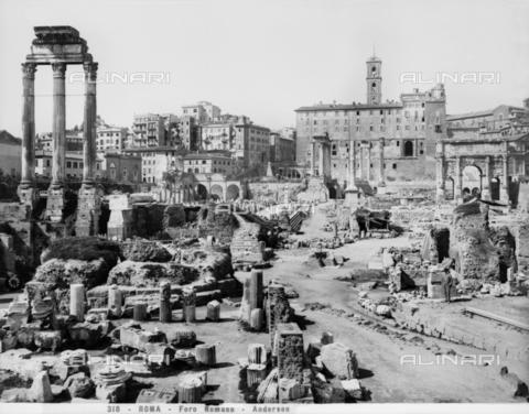 ADA-F-000318-0000 - Roman Forum, Rome