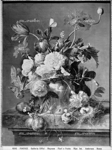 ADA-F-009292-0000 - Vase of flowers, oil on canvas, Jan van Huysum (1682-1749), Palatine Gallery and Royal Apartments, Palazzo Pitti, Florence. Today the painting is kept in a private collection in Germany - Date of photography: 1890 ca. - Alinari Archives-Anderson Archive, Florence