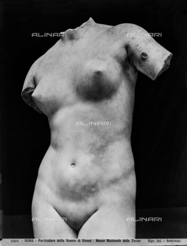 ADA-F-023641-0000 - Venus-Aphrodite anadyomène from Cirene, detail, Roman National Museum (formerly Terme di Diocleziano), Rome. In 2008 the work was transferred to Libya, Archaeological Museum of Tripoli. His current position is uncertain - Date of photography: 1902 - Alinari Archives-Anderson Archive, Florence