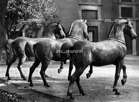 ADA-F-024548-0000 - Horses of the Quadriga of San Marco, gilded bronze, formerly Basilica of San Marco, today Museum of San Marco, Venice