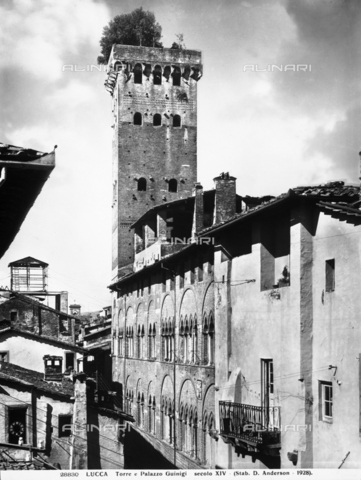 ADA-F-028830-0000 - The Guinigi Tower, Lucca