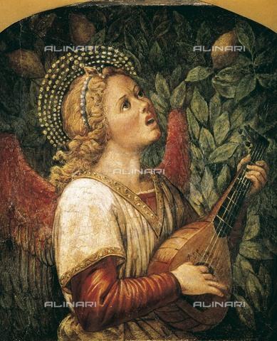AIS-F-020390-0000 - Angelo musicante; affresco staccato di Melozzo da Forli (1438-1494); Museo del Prado, Madrid - Data dello scatto: 2001 - Iberfoto/Archivi Alinari