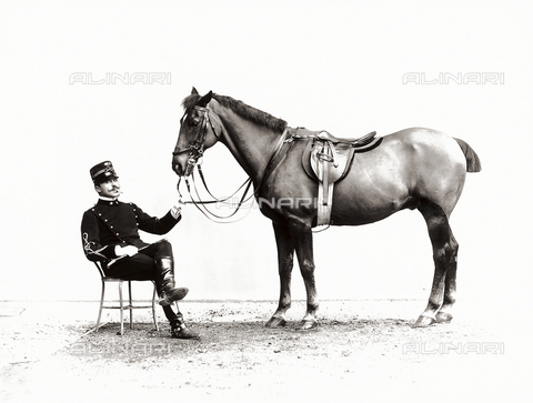 APA-F-002412-0000 - Lieutenant Solaro photographed next to his horse