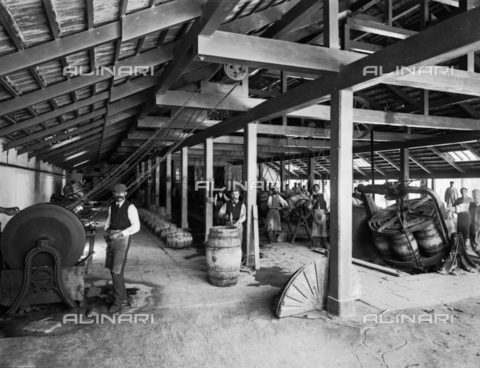 APA-F-004121-0000 - Interior of part of the Ingham Distillery of Marsala wine. Surrounded by barrels and equipment, some of the workers are posing for the photographer