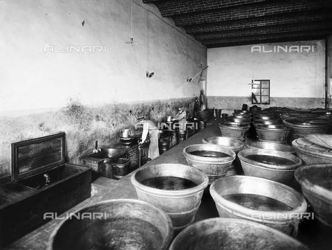APA-F-0211RI-0000 - Tinaia della fattoria del barone Giovanni Ricasoli Firidolfi Brolio, nei dintorni di Siena - Data dello scatto: 1890 ca. - Archivi Alinari, Firenze