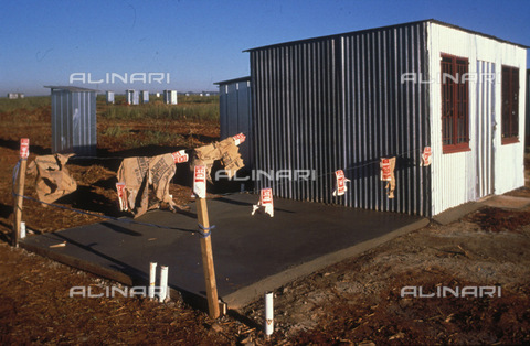 APN-F-014614-0000 - South Africa  Johanneburg  1980's: RDP delivery. New building construction.Photo: Graeme Williams/South - South Photographs / Africamediaonline/Archivi Alinari, Firenze