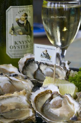 APN-F-137278-0000 - Oysters at the Knysna Oyster Co. Knysna. Western Cape, South Africa. - Africamediaonline/Archivi Alinari, Firenze, Roger de la Harpe