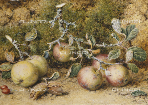 ATK-F-037819-0000 - Still Life with Apples, Hazelnuts and Rosehips.,Watercolour over pencil,19th century,Still life,Hough,William,1819-1897 - Christie's Images / Artothek/Alinari Archives