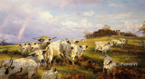 ATK-F-037880-0000 - Wild Cattle of Chartley, Chartley Castle Beyond. 1902,Davis,Henry William Banks,1833-1914,Oil/Canvas,19th century,20th century - Christie's Images / Artothek/Alinari Archives