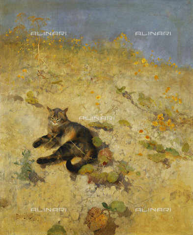 ATK-F-037888-0000 - A Cat Basking in the Sun. 1884,Oil/Canvas,20th century,19th century,Liljefors,Bruno Andraes,1860-1939, - Christie's Images / Artothek/Alinari Archives