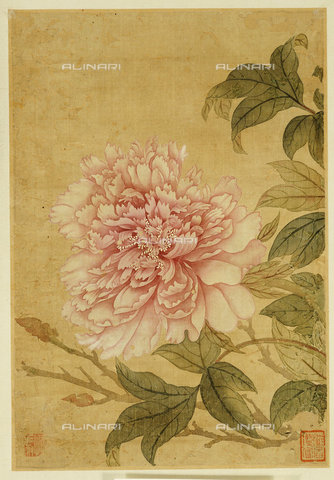 ATK-F-038111-0000 - Peony. Yun Shouping (1633-1690). Leaf From An Album Of Flower Paintings.,ink,17th century,on Silk,Shouping,Yun,1633-1690 - Christie's Images / Artothek/Alinari Archives