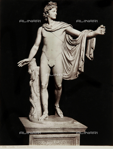 AVQ-A-000039-0067 - Apollo of the Belvedere, Pio-Clementino Museum, Vatican Museum, Vatican City - Data dello scatto: 1870 ca. - Archivi Alinari, Firenze