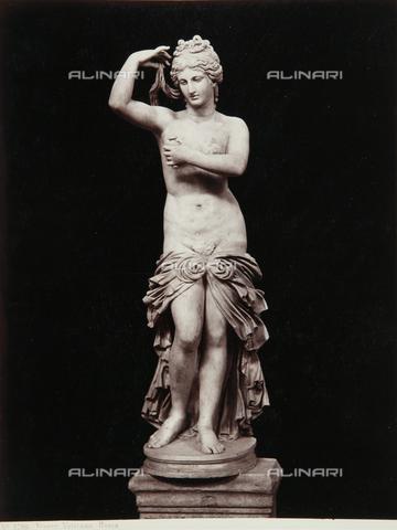AVQ-A-000039-0068 - Venus, Pio-Clementino Museum, Vatican Museum, Vatican City - Data dello scatto: 1870 ca. - Archivi Alinari, Firenze
