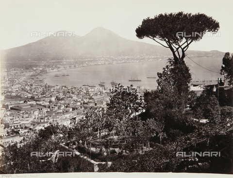 AVQ-A-000039-0075 - A panoramic view of Naples - Data dello scatto: 1870 ca. - Archivi Alinari, Firenze