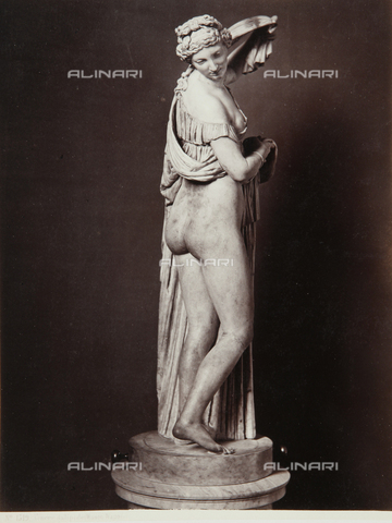 AVQ-A-000039-0093 - Venus Callipigia, The National Archaeological Museum - Data dello scatto: 1870 ca. - Archivi Alinari, Firenze