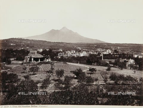 AVQ-A-000039-0125 - view of Etna from Bellini Garden, Catania - Data dello scatto: 1870 ca. - Archivi Alinari, Firenze
