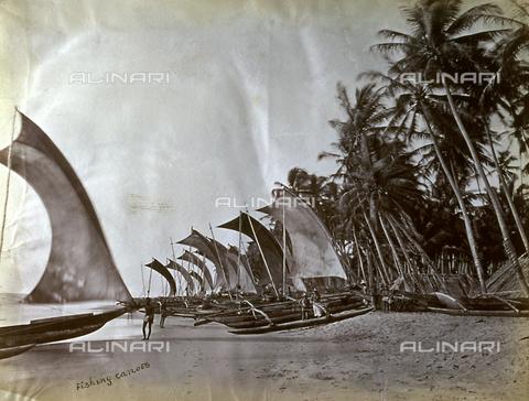 AVQ-A-000060-0019 - Caratteristiche canoe da pesca tratte in secca lungo una spiaggia indiana - Data dello scatto: 1870-1890 ca. - Archivi Alinari, Firenze