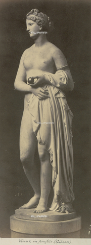 AVQ-A-000089-0014 - Photographic pictures of Rome: statua di Venere - Data dello scatto: 1862 - Raccolte Museali Fratelli Alinari (RMFA), Firenze