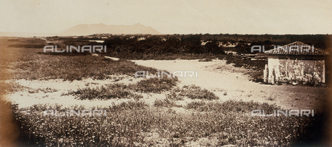 AVQ-A-000089-0038 - Photographic pictures of Rome: the Pontine Marshes; Mount Circeo is in the background - Data dello scatto: 1862 - Archivi Alinari, Firenze