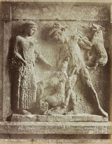 AVQ-A-000169-0040 - Metopa del Tempio E di Selinunte con Diana e Atteone, Museo Regionale Archeologico di Palermo - Data dello scatto: 1870-1880 - Raccolte Museali Fratelli Alinari (RMFA), Firenze