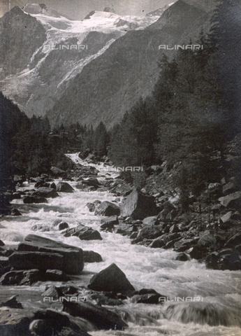 AVQ-A-000205-0018 - Mountain stream bordered by a fir wood - Date of photography: 1931 ca. - Fratelli Alinari Museum Collections, Florence