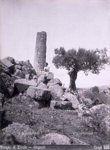 AVQ-A-000329-0096 - Ruins of the Temple of Hercules in Girgenti - Data dello scatto: 1880 ca. - Archivi Alinari, Firenze