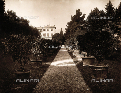 AVQ-A-000443-0031 - The path of the garden of Villa Zina, former Villa Giulia in Bellagio on the Lake Como. - Data dello scatto: 1915 ca. - Archivi Alinari, Firenze