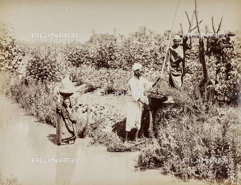 AVQ-A-000523-0018 - Egiziani che prelevano l'acqua con una pompa artigianale - Data dello scatto: 1880 - 1890 - Raccolte Museali Fratelli Alinari (RMFA), Firenze