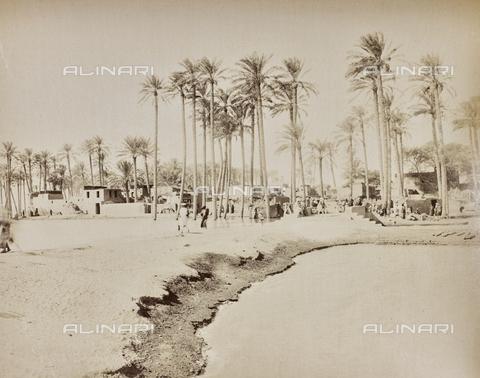 AVQ-A-000523-0021 - Villaggio egiziano - Data dello scatto: 1880 - 1890 - Raccolte Museali Fratelli Alinari (RMFA), Firenze