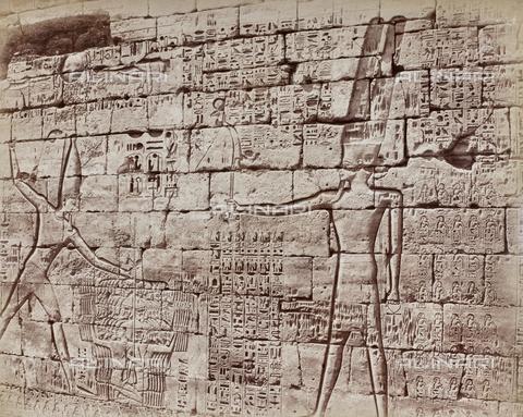 AVQ-A-000523-0046 - Geroglifici e Divinità, rilievi sul muro del tempio di Karnak, Egitto - Data dello scatto: 1880 - 1890 - Raccolte Museali Fratelli Alinari (RMFA), Firenze