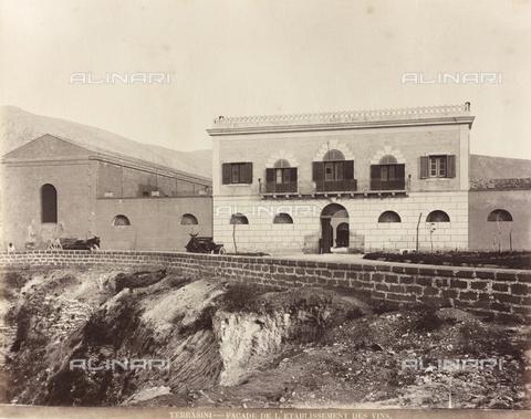 AVQ-A-000570-0055 - Azienda vinicola a Terrasini, Palermo - Data dello scatto: 1900 ca. - Raccolte Museali Fratelli Alinari (RMFA), Firenze