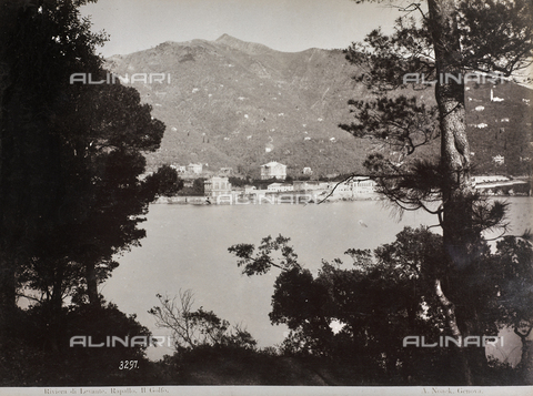 "AVQ-A-001038-0038 - Album ""Gênes et ses environs octobre 1891 - 1307"": view of the gulf of Rapallo in the Levante Riviera. Date 1307 refers to the Rumi calendar (calendar used since 1839 by the Ottoman Empire and the Turkish Republic until 1926) - Data dello scatto: 10/1891 - Archivi Alinari, Firenze"